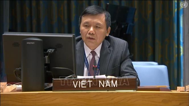 ベトナム、イエメン情勢に関する安保理の会議に出席 - ảnh 1