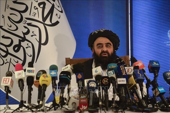 米代表団、タリバンとドーハで対話へ アフガン撤退後初めて - ảnh 1