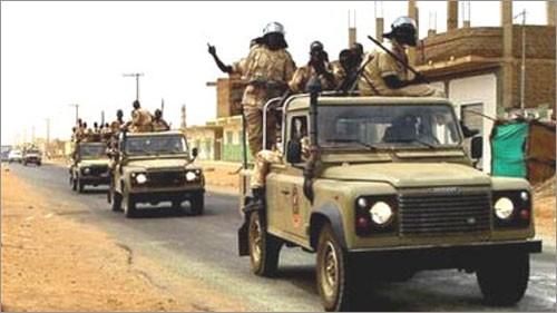美国呼吁苏丹、南苏丹实现停火 - ảnh 1