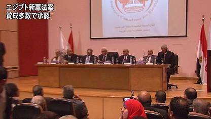 埃及总统宣布新宪法生效 - ảnh 1
