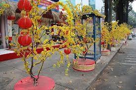 胡志明市举行庆党迎春活动 - ảnh 1
