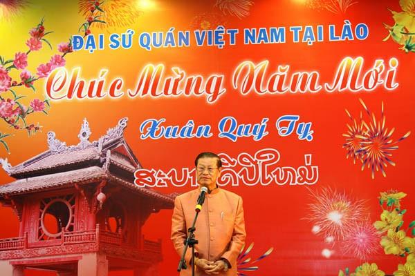 越南驻老挝大使馆举行迎春活动 - ảnh 1
