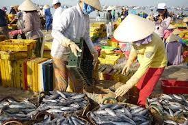 总结2012-2013北方渔业工作,开展2013南方渔业工作 - ảnh 1