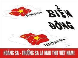 中国开放黄沙群岛旅游严重侵犯越南主权 - ảnh 1