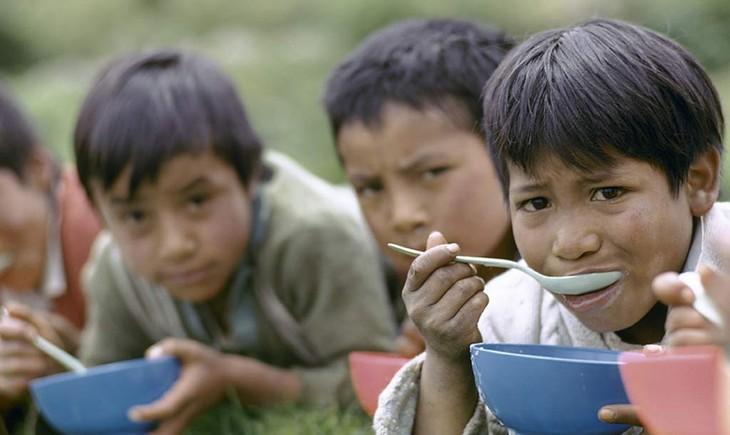 联合国呼吁国际社会共同努力消除贫困 - ảnh 1