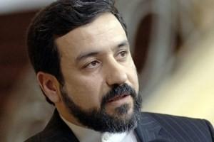 伊朗与伊核问题6国促进落实协议 - ảnh 1