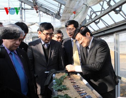 欢迎张晋创主席访日的正式仪式17日上午在日本皇宫举行 - ảnh 1