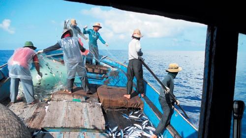 越南支持国际劳工组织关于制定公平迁移议事日程的倡议 - ảnh 1