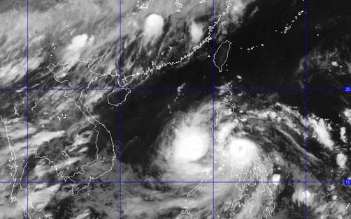 台风威马逊应对工作准备就绪 - ảnh 1
