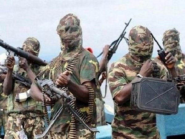 博科圣地武装分子绑架喀麦隆副总理夫人 - ảnh 1