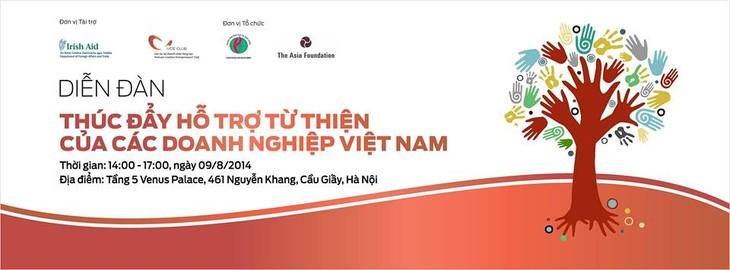 促进越南企业开展慈善活动 - ảnh 1