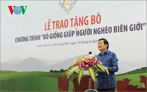 越南国家主席张晋创出席向贫困者赠送种牛仪式 - ảnh 1