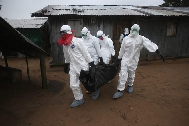 埃博拉死亡病例增至1350个 - ảnh 1