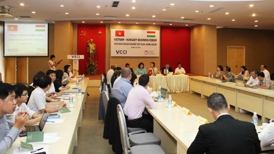 越南-匈牙利关系在多领域日益发展 - ảnh 1