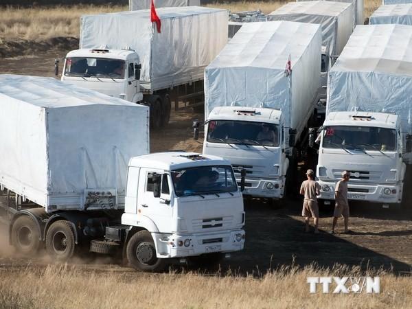 俄罗斯提请联合国通过要求在乌东部实施停火的声明 - ảnh 1