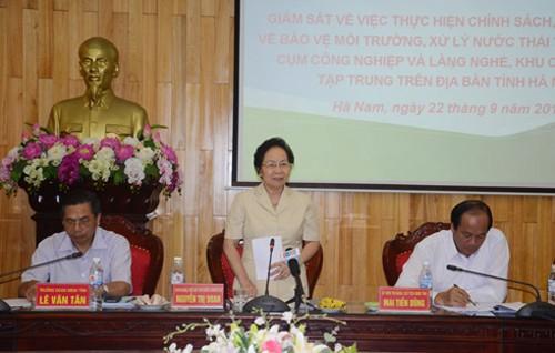 越南国家副主席阮氏缘与河南省选民接触 - ảnh 1