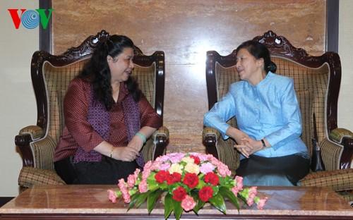 越南和老挝交流法律草案政策分析经验 - ảnh 1
