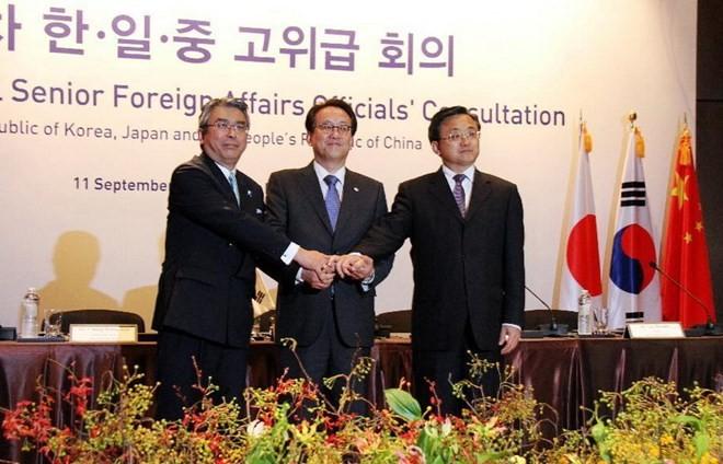 中日韩举行高级别外交会谈 - ảnh 1