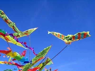 2015年国际风筝节将在巴地头顿省举行 - ảnh 1