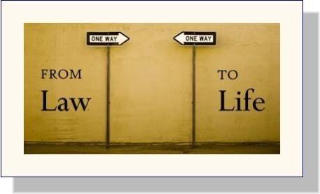 按照2013年版宪法精神开展法律建设 - ảnh 2
