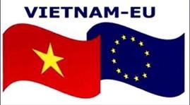 """越南参加比利时""""新欧洲人""""联欢活动 - ảnh 1"""