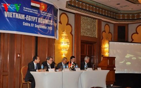越埃企业论坛在埃及举行 - ảnh 1