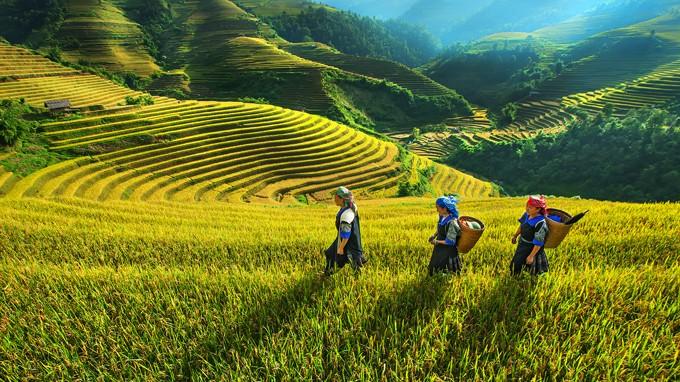 越南西北地区旅游推介与投资促进会举行 - ảnh 1