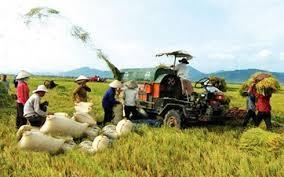 《跨太平洋伙伴关系协定》是推动农业结构重组的机会 - ảnh 2