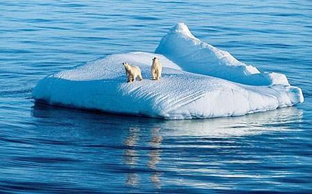 COP 21在决定性时刻到来前未能达成有关权利和义务的一项全球性协议 - ảnh 2