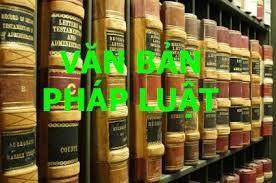 越南国会基于宪法精神完善法律体系 - ảnh 1