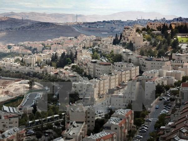 以色列拟在东耶路撒冷定居点兴建数百套住房 - ảnh 1