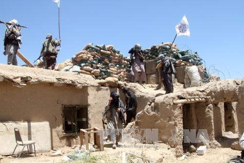塔利班宣布不会延长停火协议 - ảnh 1