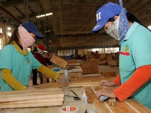 女企业家融资倡议协助由女性做主的越南和太平洋中小型企业 - ảnh 1