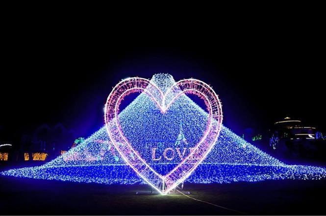大叻市首次举行光影艺术表演 - ảnh 1