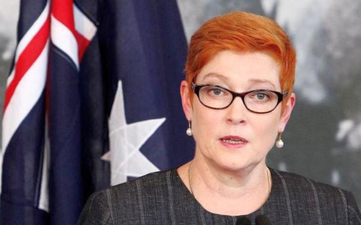 澳大利亚就新冠肺炎疫情向中国和世卫组织施压 - ảnh 1