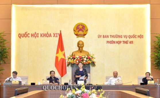 越南国会常务委员会第45次会议开幕 - ảnh 1