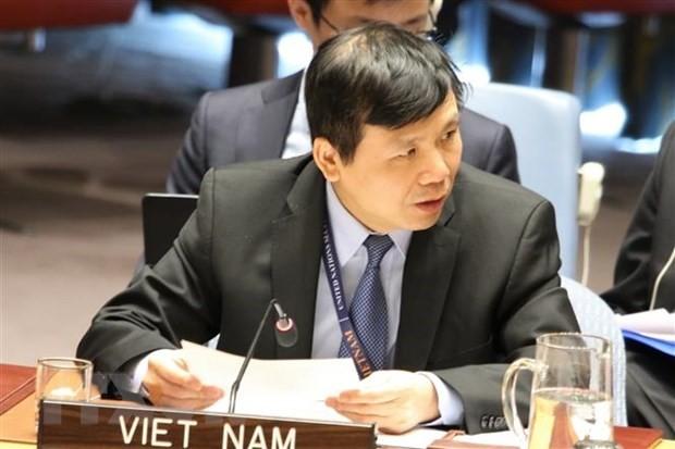越南主持召开联合国安理会有关国际法院工作组的会议 - ảnh 1