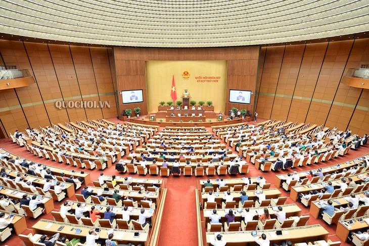 越南国会将制定许多重大政策 以恢复生产经营活动 - ảnh 1