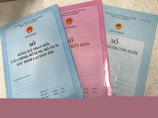 建立伙伴关系以加强越南户籍登记和统计工作 - ảnh 1