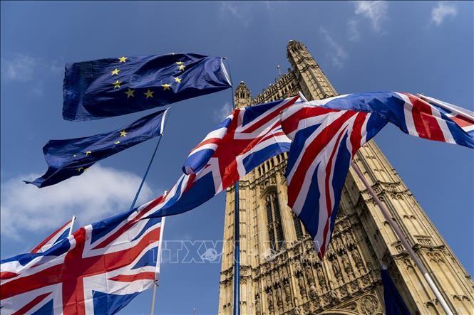 英国脱欧后的英欧贸易谈判将延长至10月 - ảnh 1