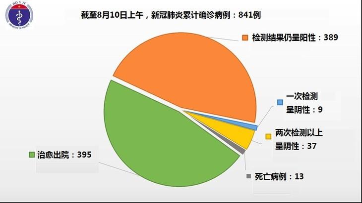 越南8月10日上午无新增确诊病例 - ảnh 1