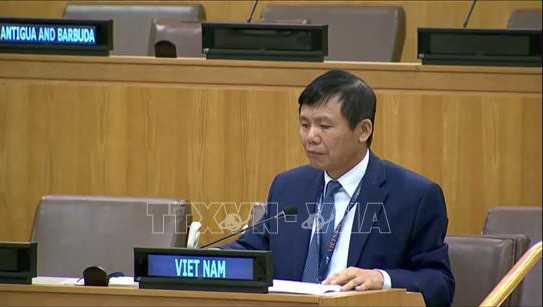 越南强调东盟支持不扩散杀伤性武器和不搞军备竞赛 - ảnh 1