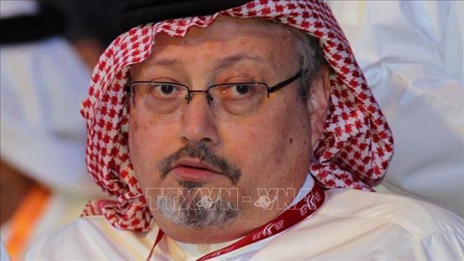 美国制裁沙特阿拉伯的几位政府高官 - ảnh 1