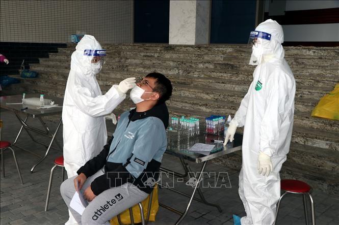 越南新增7例新冠肺炎确诊病例 - ảnh 1