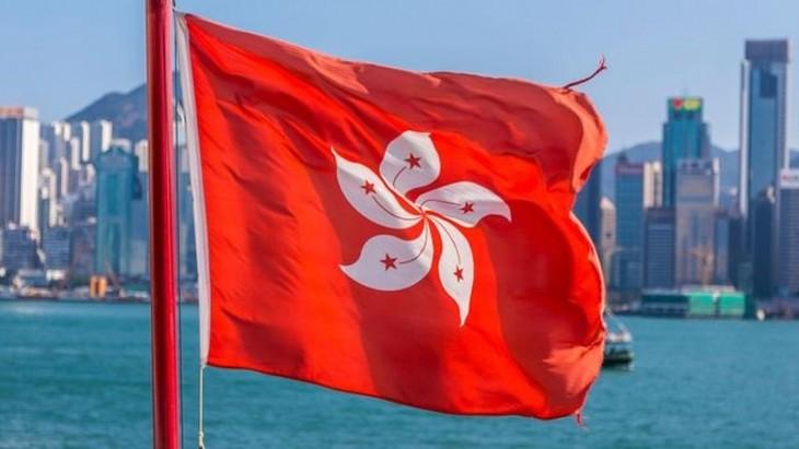 七国集团发表有关改变香港选举制度的联合声明 - ảnh 1