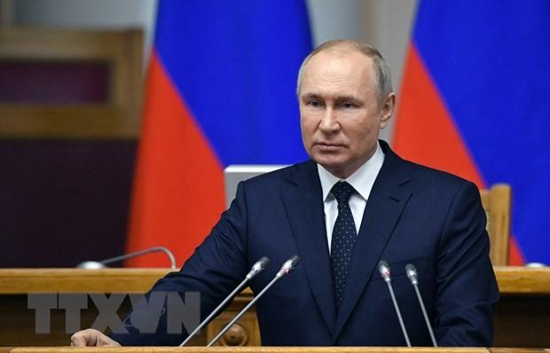 俄罗斯总统普京对世界经济前景充满乐观 - ảnh 1