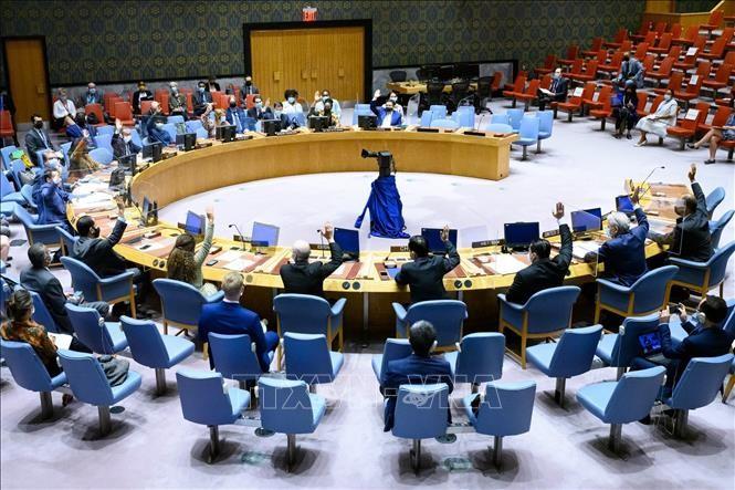 越南呼吁索马里各方化解分歧,将国家民族利益放在首位 - ảnh 1