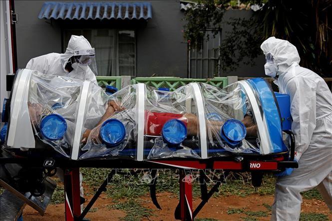 全球新冠肺炎疫情峰会下周在美国举行 - ảnh 1