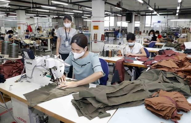 恢复纺织品成衣和皮革鞋类产业的生产 - ảnh 1