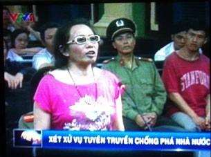 Pemberian penghargaan kepada orang yang melanggar Undang-Undang Vietnam merupakan tindakan yang salah - ảnh 1